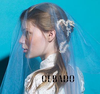 peinados novias y eventos zaragoza